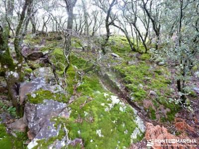 Pico Rocigalgo;Cascada Chorro,Cabañeros; sierra de gredos agencia de viajes rascafria camino del re